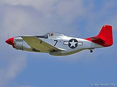"""P51 """"RED TAILS""""..signature aircraft of the Tuskeegee Airmen.  THANK YOU, Gentlemen.  These guys and their 51s were able to make short work of even the Germans and their new """"jet"""" fighters.  But the """"jets"""" were too little too late.. the Allies were winning.    Google Image Result for http://i157.photobucket.com/albums/t41/smitty919/p51Tuskegee.jpg"""