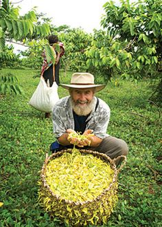 Tim Blakley from Aura Cacia in the Madagascar Ylang Ylang Field Ravintsara, Weird Plants, Perfume Making, Luxury Soap, Plantation, Doterra Essential Oils, Alternative Health, Horticulture, Sustainability