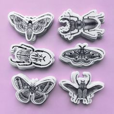 Image of Sticker pack - insect collection