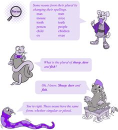 Grade 4 Grammar Lesson 5 Nouns - number (4)