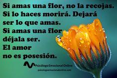 El amor no es posesión, es dejar ser...