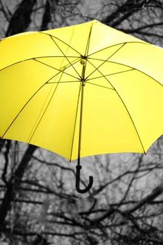 Kombininizle kontrast oluşturacak renkteki bir şemsiye...