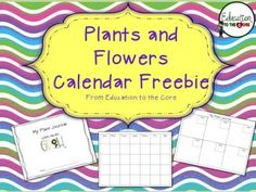 Plants and Flower Growth Calendar and Journal from Education to the Core on TeachersNotebook.com -  (6 pages)  - Perfect to supplement your Plant and Flower Unit! Each student will have a journal to record their plant and flower growth. Great artifact for students to reflect on the growth and change during their investigation and observation.   Find more about me at