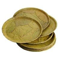 Disposable Leaf Plates  sc 1 st  Pinterest & Taste of Nepal: Leaf Plates of Nepal (Tapari Duna Bota ...