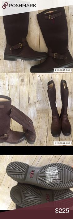 🎉HP🎉UGG knee high boots NWT size 7 dark brown UGG knee high wool and polyester knee high boots NWT size 7 these are an amazing deal. UGG Shoes Winter & Rain Boots