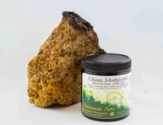 Chaga Mushroom Dual Extract Powder