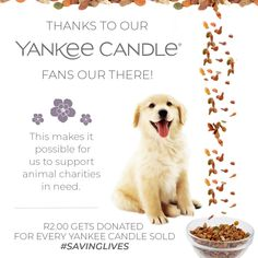 Thanks to our YANKEE CANDLE fans out there! This makes it possible for us to support animal charities in need. -- R2.00 gets donated for every Yankee Candle sold. #savinglives www.yankeecandlesa.co.za Scented Candles, Charity, Fans, Thankful, How To Make, Animals, Animales, Animaux, Followers