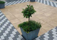 Die 135 Besten Bilder Von Terrassenplatten In 2019 Concrete Paving