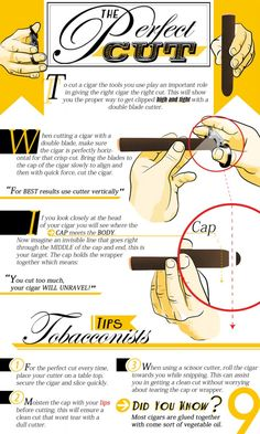 The 9cigars guide to The Perfect Cut for your cigar. To embed this graphic on your website, please see the easy embed code at the bottom of the graphic. Enjoy! Share this Image On Your Site Please include attribution to 9cigars.com with this graphic.