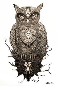 Owl by Striga :)