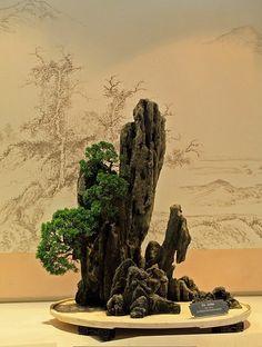 Ferns Garden, Bonsai Garden, Bonsai Art, Bonsai Trees, Asian Artwork, Buddha Garden, Juniper Bonsai, Chinese Garden, Landscaping With Rocks