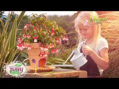 My Fairy Garden UK Commercial
