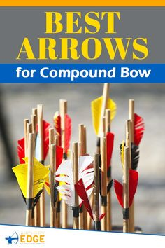 Best Arrows for Compound Bow! Wooden hunting arrows, hunting arrow heads, best hunting arrows, how to make hunting arrows, hunting arrow tips, hunting arrow design, Arrow Hunting, archery hunting, archery hunting gear, archery hunting tips, arrows hunting guide, archery hunting tips, Archery target stand, archery range, archery hunting, archery quotes, archery equipment, archery women, archery backstop, archery photography, horse archery, archery arrows hunting. #arrowshunting Bow Hunting Women, Bow Hunting Tips, Hunting Guide, Hunting Arrows, Deer Hunting Blinds, Archery Arrows, Archery Targets, Archery Gear, Archery Range