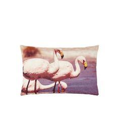De+Kussenfabriek+Sierkussen+Flamingo #flamingo #pillow #textile #myhomeshopping