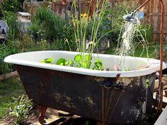gartenteich bauen mini badewanne dusche