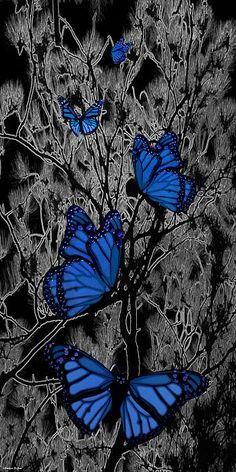 Blue Butterflies by Barbara St. Jean