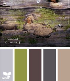 #DesignSeeds wooded tones