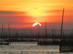A scenic view of the laguna bay. (C) Mai