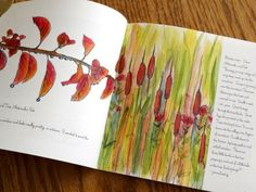 Examples of Art Journals | Watercolor Sketchbook Nature Journal Pen and Ink Art Collection ...
