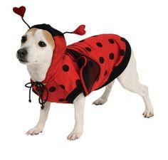 Lady Bug Pet Costume, X-Large - http://www.thepuppy.org/lady-bug-pet-costume-x-large/