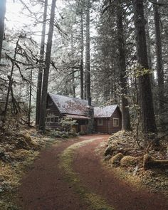 I would live in old cottage in the woods propably only with my dad