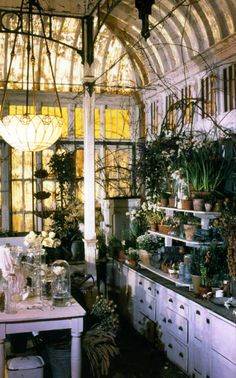 Greenhouses & Potting Sheds A collection of garden and potting shed ideas and greenhouse inspiration.A collection of garden and potting shed ideas and greenhouse inspiration. Garden Cottage, Home And Garden, Indoor Garden, Garden Nook, Witch's Garden, Inside Garden, House Inside, Practical Magic House, Roman And Williams
