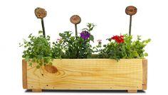 Truhlík vlastní výroby Garden, Plants, Garten, Lawn And Garden, Gardens, Plant, Gardening, Outdoor, Yard