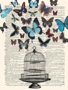 Birdcage Butterflies Art Print