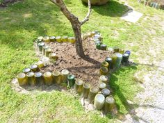 Wine bottles in the ground(neck down) create a unique star border around this tree. Small Vegetable Gardens, Starting A Vegetable Garden, Vegetable Garden Design, Veggie Gardens, Wine Bottles, Empty Bottles, Contemporary Garden Design, Bottle Garden, Easy Garden