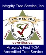 Integrity Tree Service, Inc. - Arizona's First Accredited Tree Service - info on tree and plant management