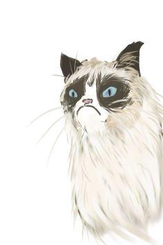Drawing of my spirit animal, Grumpy Cat