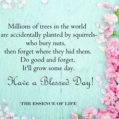 Squirrel Good Morning Nature, Good Morning Wishes, Good Morning Quotes, Words Quotes, Wise Words, Sayings, Qoutes, Bhudda Quotes, Angel Pictures