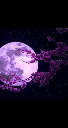 Moon 3