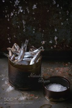 Raw Anchovies Fishes in Can by NatashaBreen