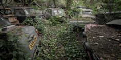 Tucked away in the woods, somewhere in northern england is a rustic time capsules slowly taken back by nature. Most of these are older than myself, relics of our transporting past. [cycloneslider id=cars]