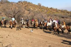 Horseback Riding Tours Enjoy a 3 hour horseback riding tour of Santiago's surrounding areas such as the International Equestrian School in La Dehesa, Maipo Valley (vineyards) andRitoque beach.Start the day with an 8am pickup from the predetermined meeting point within Santiago. Upon arrival, you will register, meet your Chilean horse and go over some riding techniques with your guide before heading out for your ride. Each destination on this tour has its own unique experience...