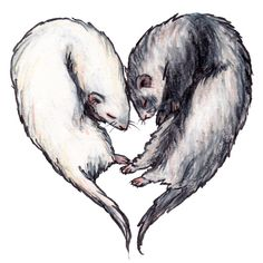 Love Ferrets Art Print