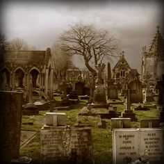 """""""This is one of a group of photos I took on 28 March 2006- a rainy and overcast day- in St Mary's Roman Catholic Cemetery, Kensal Green London, and the neighbouring Kensal green Cemetery. Both are largely 19th Century with Kensal Green-the first of London's Magnificent Seven Cemeteries-opened in 1832, and St Mary's in 1858. The post processing involved increasing the contrast, and darkening the skies , and increasing the reds and yellows in the colour balance."""""""
