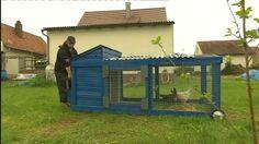 Hühnertraktor | Bild: Bayerischer Rundfunk