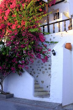 Greece - Kalymnos - in the streets of Masouri