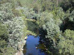 Vouga River, excellent walk and bath...