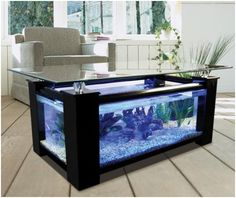 Google Image Result for http://understandingpets.net/wp-content/uploads/2011/10/Cool-Aquarium-1.jpg