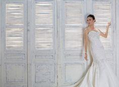 Ezra (1) Designer Wedding Gowns, Designer Gowns, Ezra 1, Plus Size Designers, Bridal Gowns, One Shoulder Wedding Dress, High Fashion, Bride, Dressers