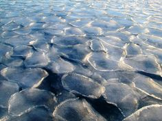 Pancake ice forms on the Southern Ocean. Image courtesy of Zee Evans, National Science Foundation.