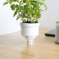 Download for free on https://cults3d.com - Campbell Planter - Fully 3D Printed Self-Watering Planter STL model, Flowalistik - #3Dprinting