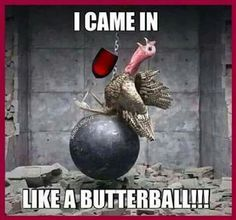 I Came In Like A Butterball thanksgiving thanksgiving pictures thanksgiving quotes thanksgiving humor funny thanksgiving quotes thanksgiving image quotes thanksgiving 2015 quotes thanksgiving quotes and sayings funny holiday quotes for thanksgiving Funny Meme Pictures, Funny Animal Memes, Funny Animals, Animal Funnies, Funny Turkey Pictures, Farm Animals, Funny Images, Turkey Images, Dog Memes
