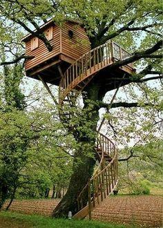 Accès par l'escalier en colimasson vers la cabane en bois dans les arbres