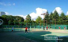 2016年9月4日江東区木場公園 昨日に続き今日も2面4時間テニス(*^_^*) 大学生&社会人の20代が多数参加する東京テニスサークル http://tokyotennis.webcrow.jp https://m.facebook.com/circle.tennis/ #テニスサークル  #テニススクール #大学生 #社会人