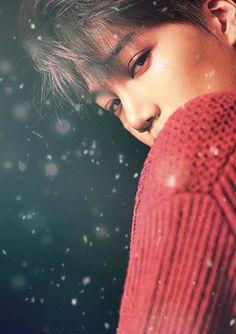 Kai - EXO   Tumblr