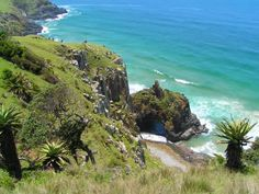close to coffee shack backpackers hostel, wild coast, south africa Places Ive Been, Places To Visit, Xhosa, Hostel, Backpacking, South Africa, Cape, Trail, Beautiful Places